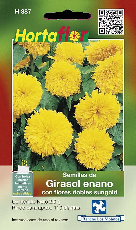 Girasol Enano Con Flores Dobles Sungold