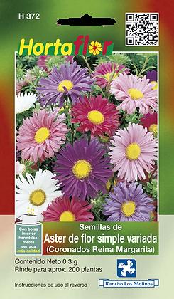 Aster De Flor Simple Variada Coronados Reina Margarita