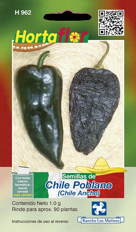 Chile Poblano Chile Ancho