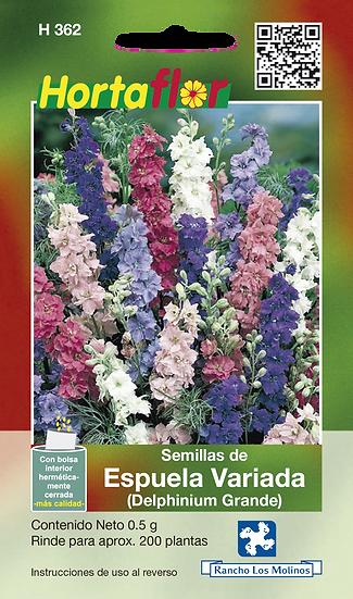 Espuela Variada Delphinium Grande