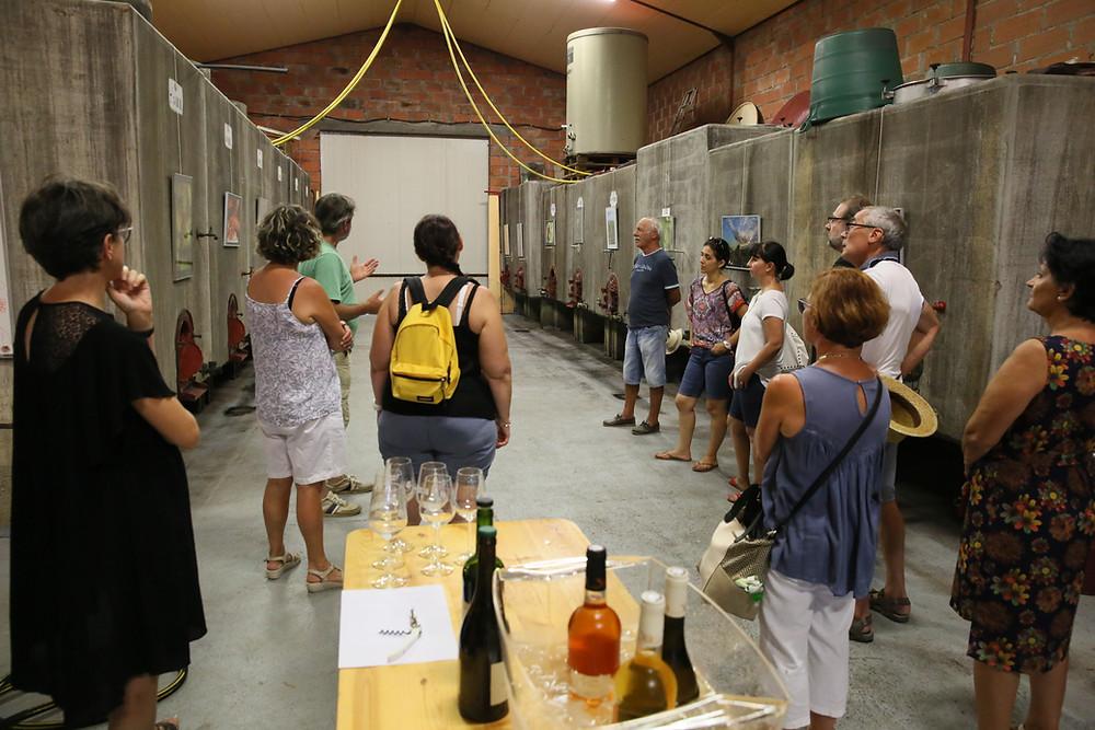 Accueil jusqu'à 50 personnes   Visite de la vigne , du chai et dégustation