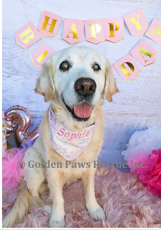 Sophies 12th Birthday 19-7-2020 (6).png