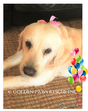 Picture for Mia's 14th Birthday 1-10-2019.png