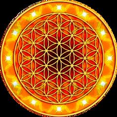 Mandala flor de la Vida y Exito
