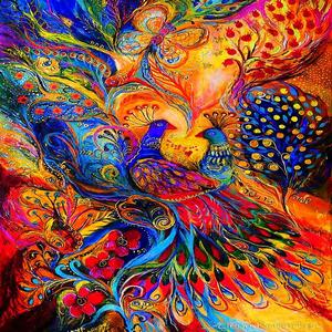 Texturas bellos colores