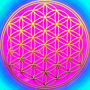 semilla de la vida rosa y dorada.png
