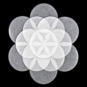 Mandala semilla de Vida armónico