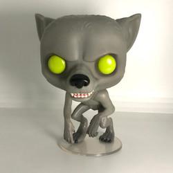 49 Remus Lupin Werewolf