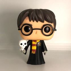 31 Harry Potter with Hedwig