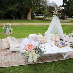A proposal picnic on Matilda Bay Foreshore