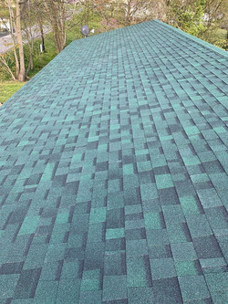 Jc Green roof