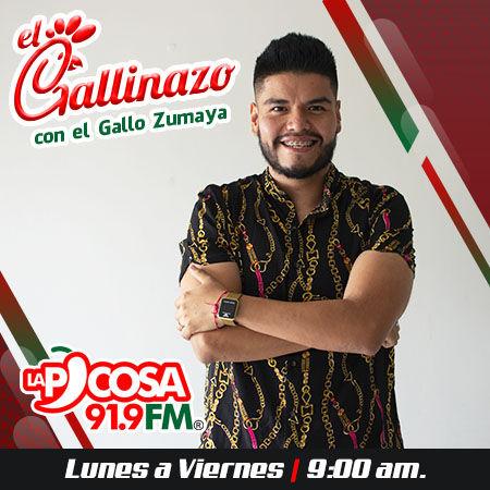 EL GALLINAZO.jpg