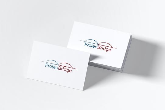 Proteo Bridge.png