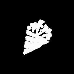 Veebo Logo.png