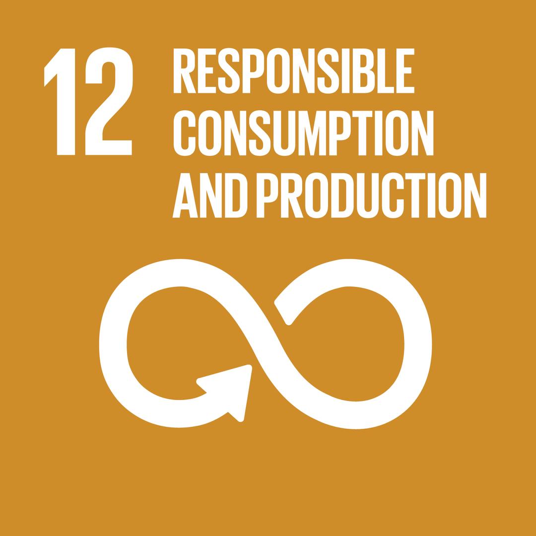 RESPONSIBLE CONSUMPTION AND PRODUCTION - แผนการบริโภคและการผลิตที่ยั่งยืน