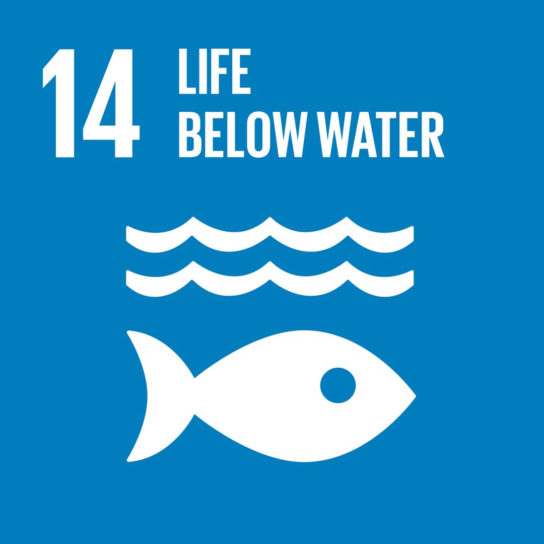 LIFE BELOW WATER - การใช้ประโยชน์จากมหาสมุทรและทรัพยาการทางทะเล