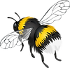 PikPng.com_bees-png_375587-min.png