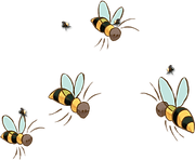 qrate homepage bee