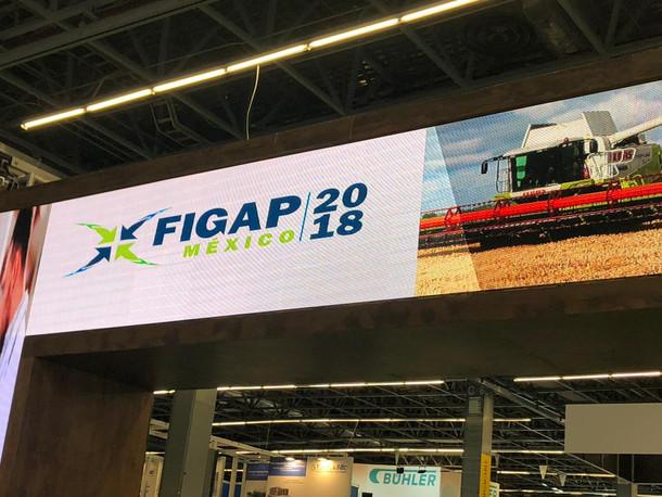 FIGAP 2018