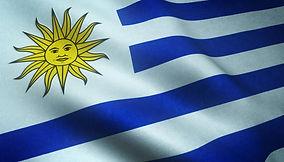 primer-plano-bandera-realista-uruguay-te