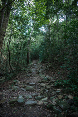Views of the Island - hiking trail