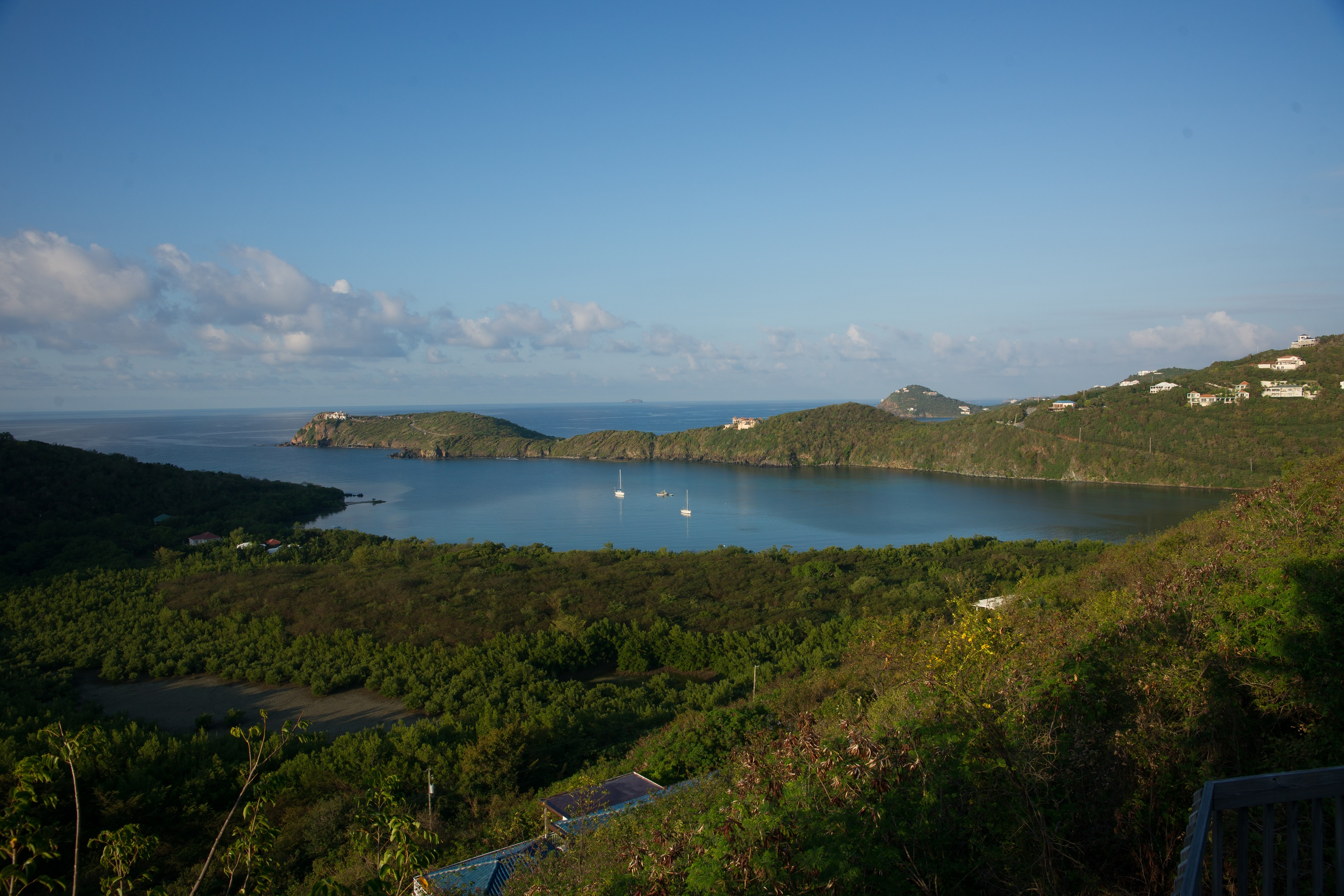 Views of the Island - Fish Bay