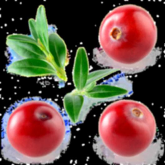 herbal products, organic, produits à base de plantes, organique