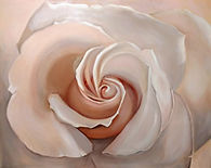 Blushed - 24-30 Rose-web.jpg
