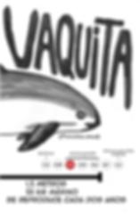 Vaquita Phocoena sinus es una marsopa mexicana Mexico en peligro critico de extinción sólo quedan 19 esto producto de la pesca ilegal del pez totoaba produciedo bycatch