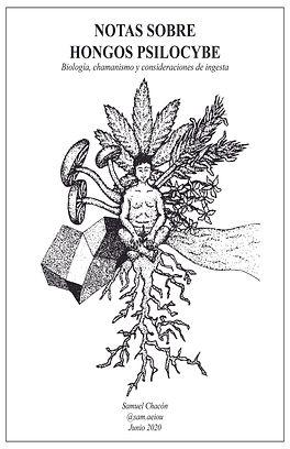 El fanzine Notas sobre Hongos Psilocybe es una guia para quienes quieran andentrarse en el consumo de hongos psicodelicos.