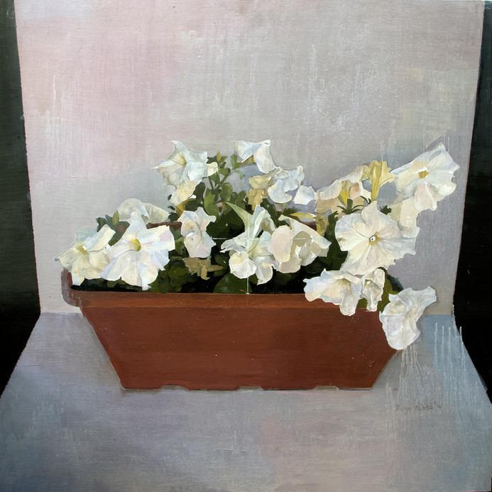 Petunias, 2016, oil on canvas, 60 x 60 cm
