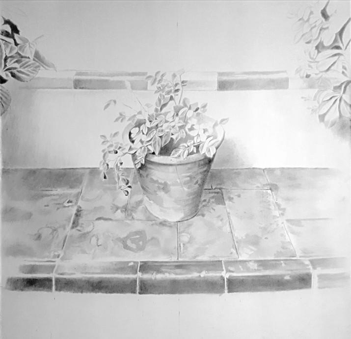 Maceta, 2018, graphite on paper, 80 x 80 cm
