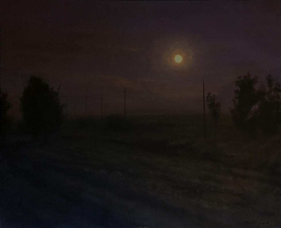 Campo y luna, 2018, acrílico sobre tela, 58 x 71 cm