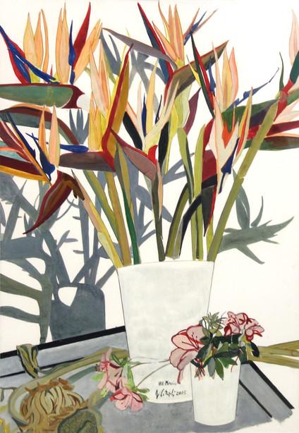Flores - Aves del Paraíso, 2015, óleo al agua sobre papel