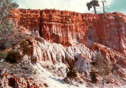 Golden Cliffs along the Murray River