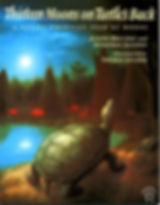 thirteen_moons_turtle_1024x1024.jpg
