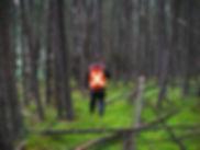 We enjoy long walks in the woods...
