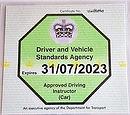 Green badge ex.jpg