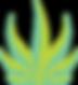 Seaweed Hemp, Seaweed Hemp Logo, Herbal Medicine, Seaweed Hemp, CBD products, CBD Oil, Seaweed CBD, edibles, tinctures, lotions, potions, bath products, CBD beauty products, CBD bath products, CBD cooking products, Seaweed CBD