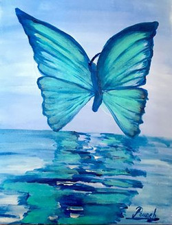 Butterfly refection