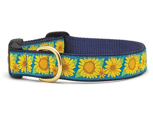Bright Sunflowers Dog Collar
