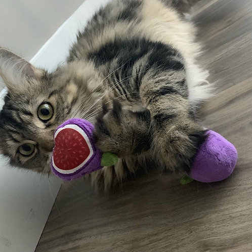MunchieCat Catnip Figs