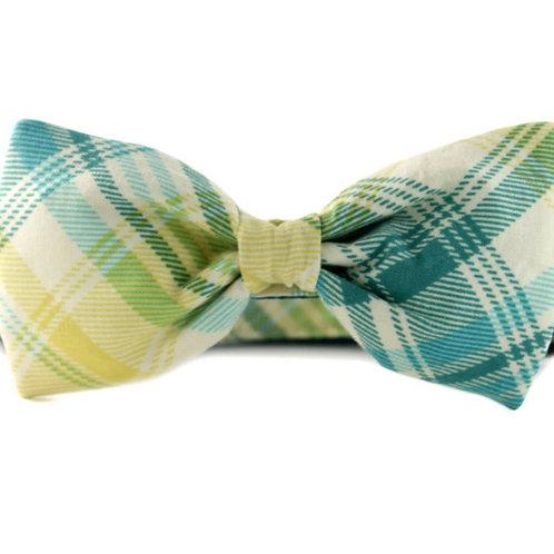 Garden Plaid Bowtie Collar