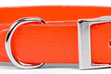 Bright Orange Elements Dog Collar