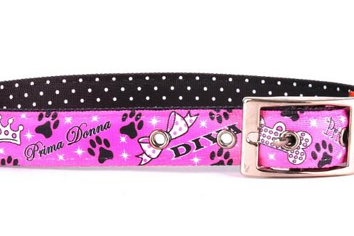 Uptown Diva Dog Collar