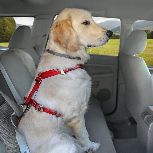 Tru-Fit Car Harness