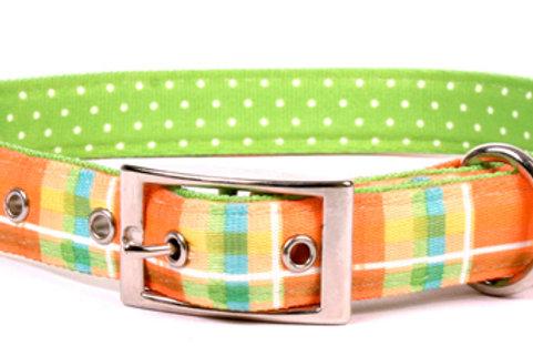 Madras Orange/ Green Dot Dog Collar