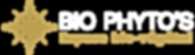 logo-B-medium.png