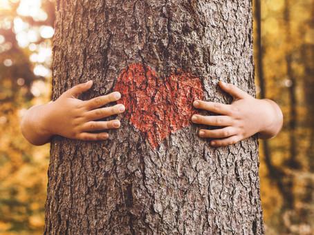 Nature to Nurture the Heart