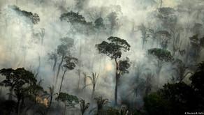 FEUER FREI IM AMAZONAS